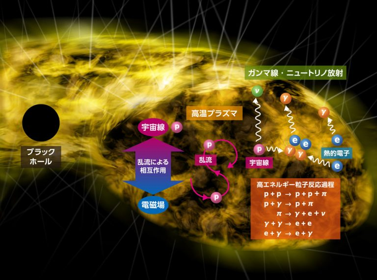 静穏な超巨大ブラックホールからの高エネルギー粒子 天体ニュートリノと天体ガンマ線の発生源を新たに提唱